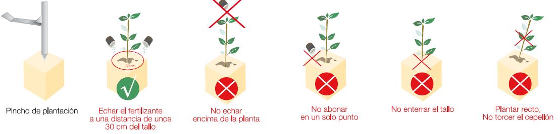 Selvicultura2